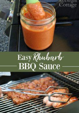 Easy Rhubarb BBQ sauce pin
