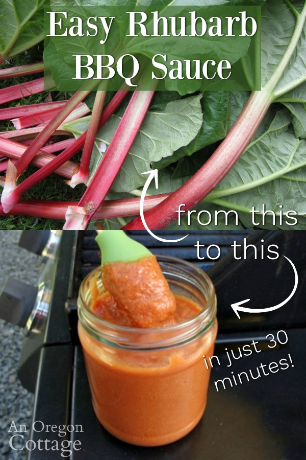 Rhubarb BBQ sauce in 30 minutes