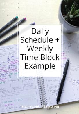 example weekly schedule-flexible planner