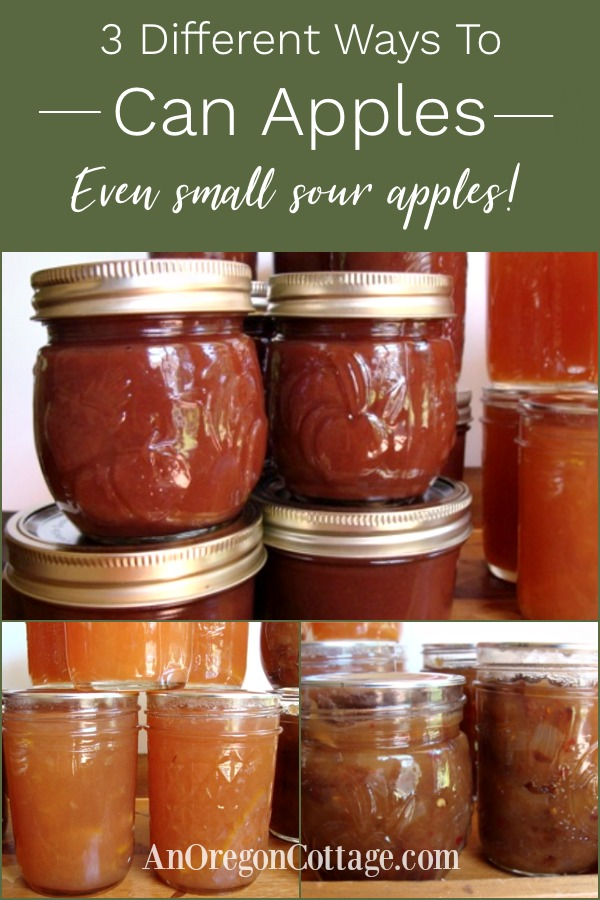 3 different ways to can apples