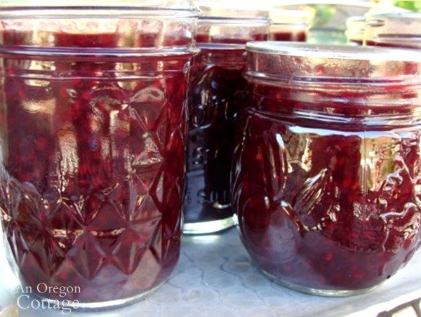 Lower Sugar Canned Berry Syrup close