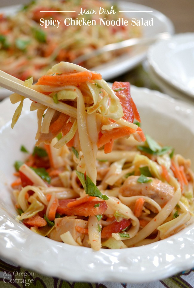 Spicy Chicken Noodle Salad is a packed-with-flavor, 30 minute, one dish meal everyone will love.