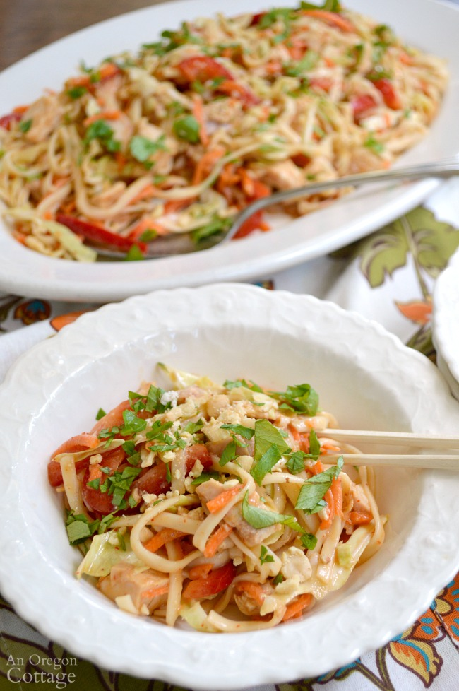 Spicy Chicken Noodle Salad makes a great warm weather easy meal.