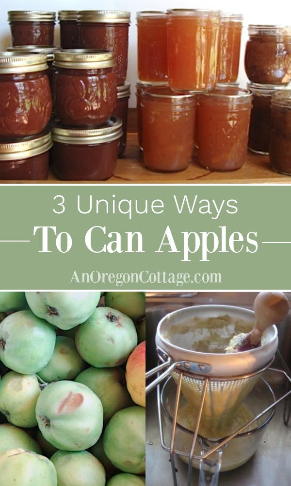 unique ways to can apples