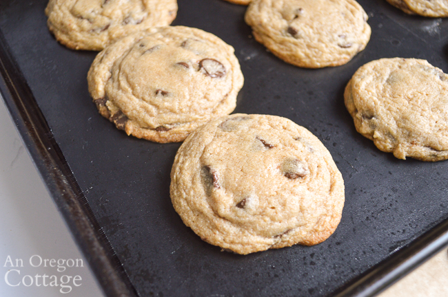 Chewy Chocolate Chip Cookies out of oven