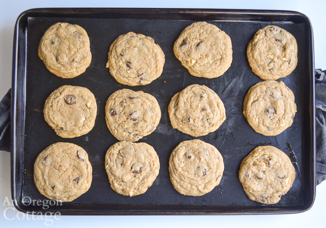 chewy chocolate chip cookies on baking sheet