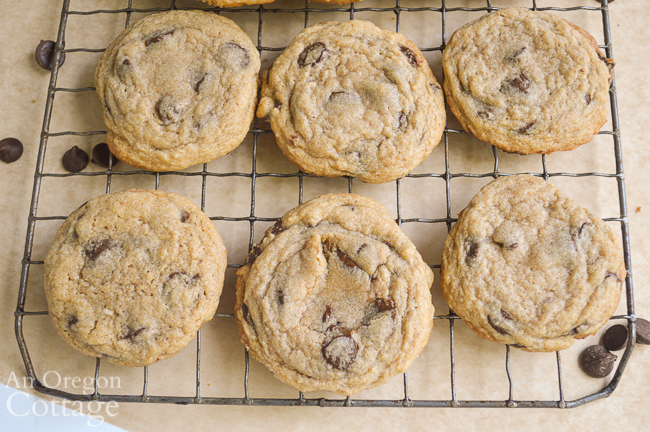cooling Chewy Chocolate Chip Cookies