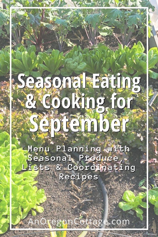 seasonal cooking for September_pin image