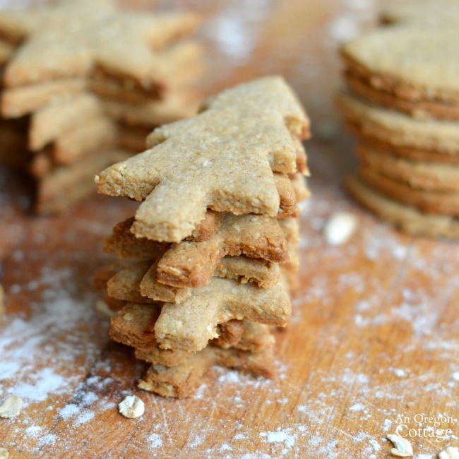 Whole Grain Cut Out Cookies for Christmas decorating