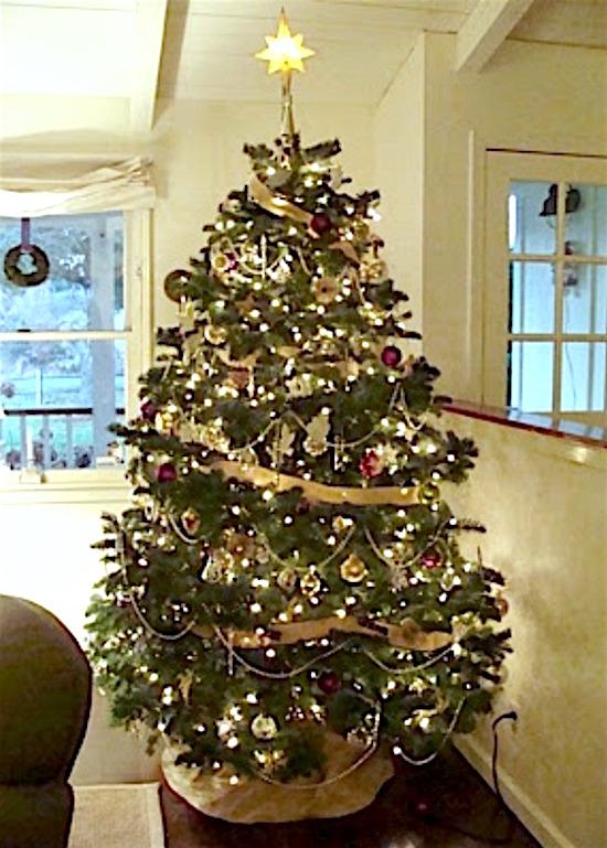 2011 Christmas Tree