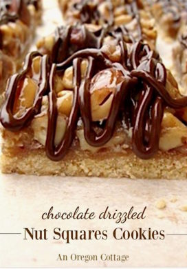 Chocolate Drizzled Nut Squares Cookies