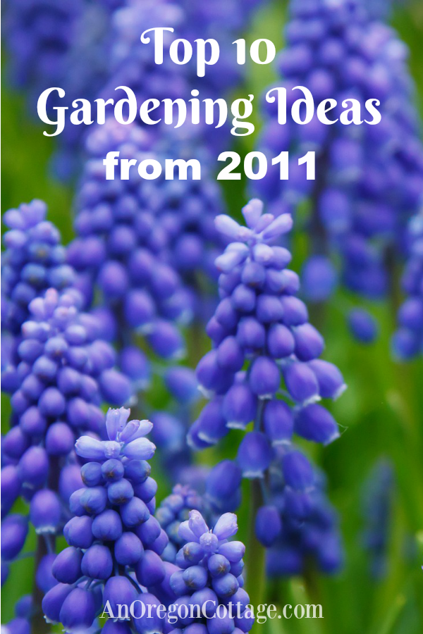 Top 10 Gardening Ideas from 2011
