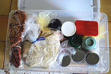 Pantry spice box