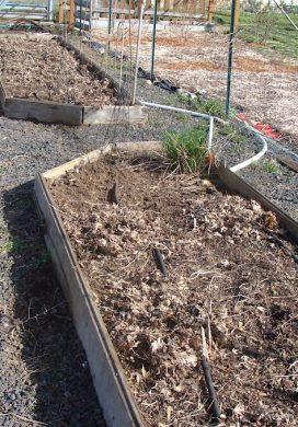 March Garden Chores 2012