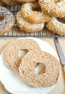 homemade sourdough bagels_featured