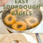 how to make easy sourdough bagels