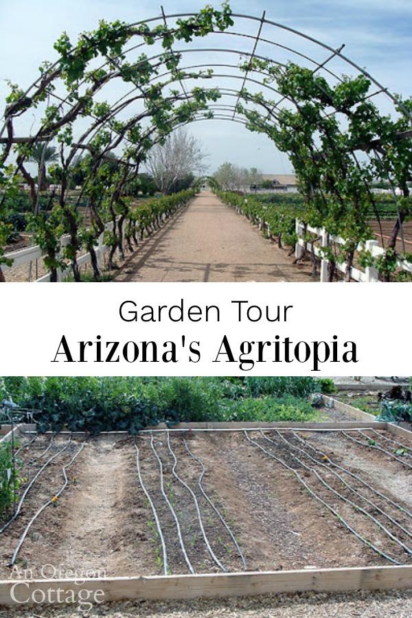 arizona agritopia garden tour