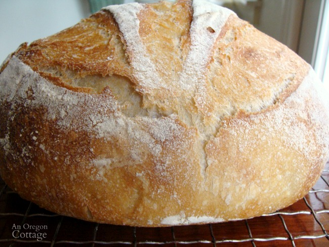 Sourdough Artisan Bread