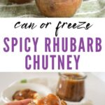 spicy rhubarb chutney to can or freeze pin