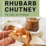 spicy rhubarb chutney pin image