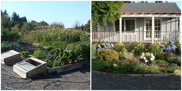 An Oregon Cottage General Organic Garden