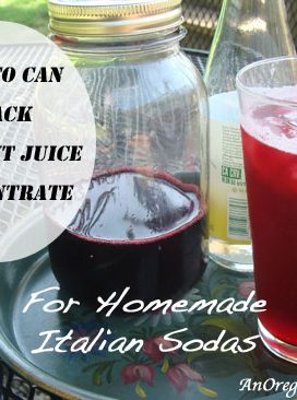 Black-Current-Juice-Italian-Soda