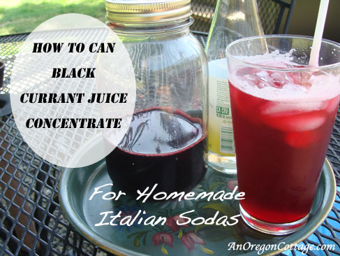 Black-Current-Juice-Italian-Soda