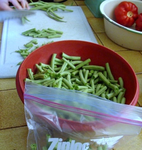 Chopping Green Beans to Freeze Unblanched