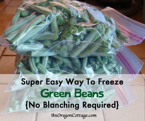 Green Bean Banner