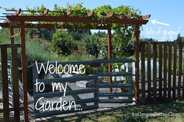 Vegetable Garden - House Tour An Oregon Cottage