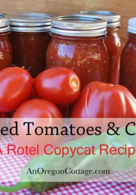Rotel Canned-Tomatoes-Chilies