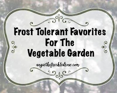 Frost Tolerant Vegetables via The Freckled Rose