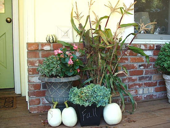 garden-harvest-decor