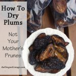 how to dry plums