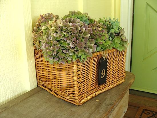 hydrangea-basket