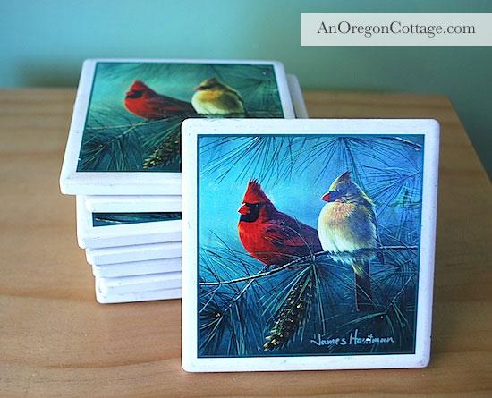 bird-coasters-before