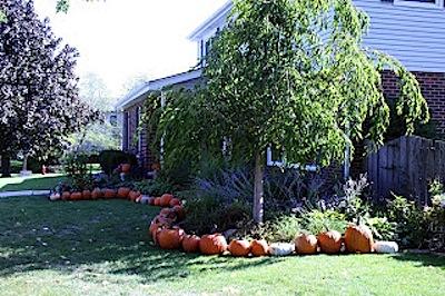 pumpkin-lined bed