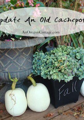 update-old-cachepot