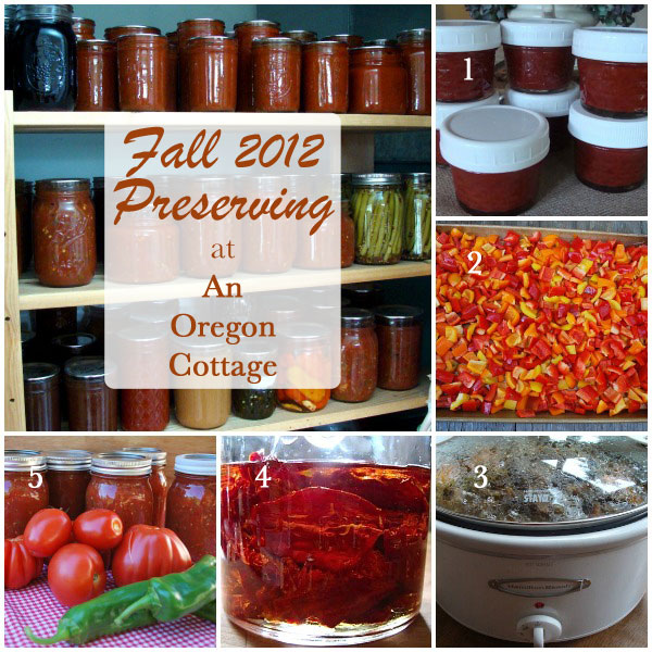 fall-preserving-collage