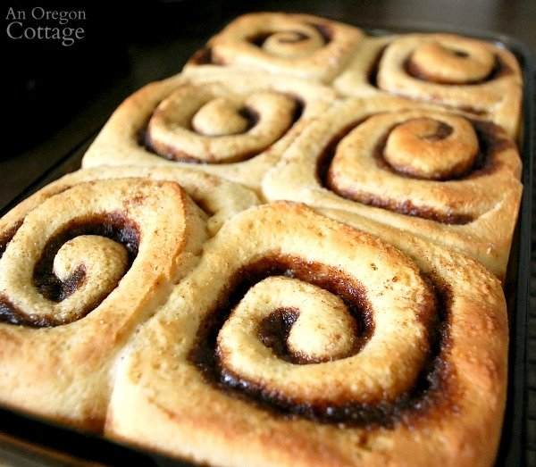 baked cinnamon rolls in pan