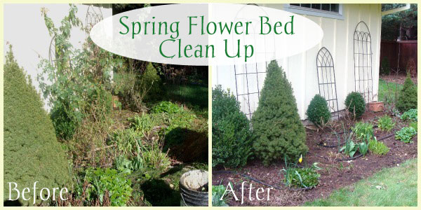 Flower-Shrub-Bed-before-after