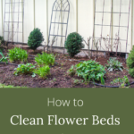 how to clean flower beds in spring