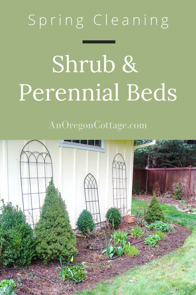 spring cleaning shrub-perennial beds