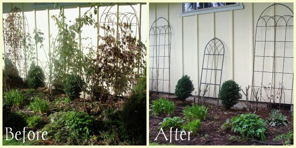 trellis-bed-before-after