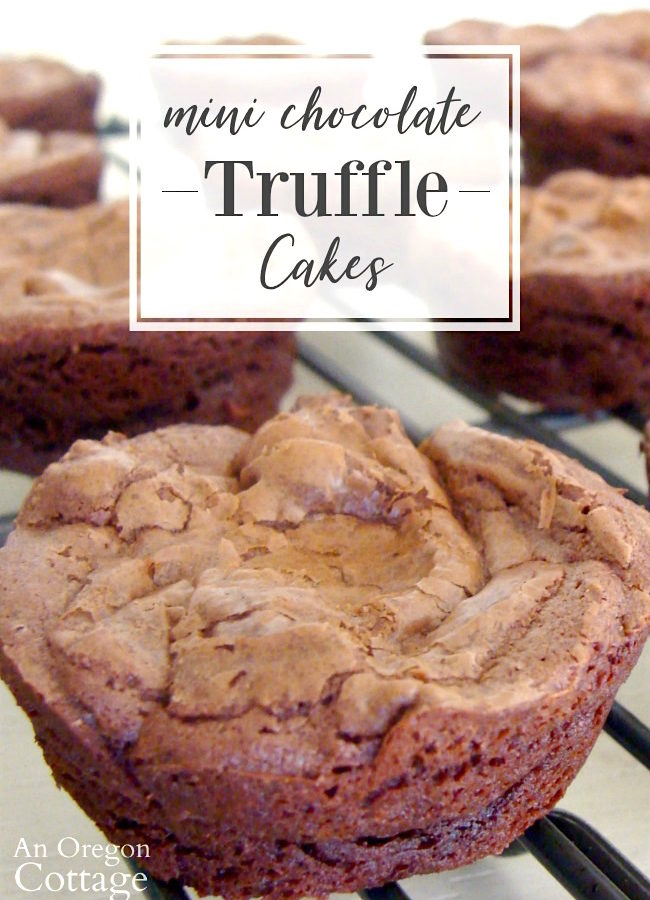 Mini Chocolate Truffle Cakes