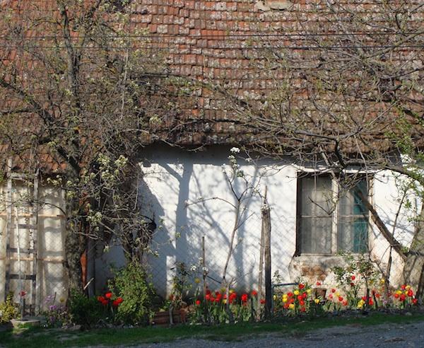 old kosovo cottage