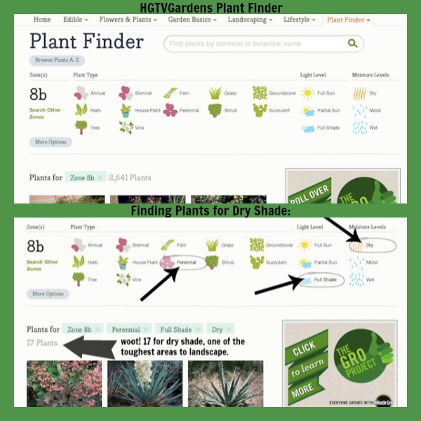 HGTVGardens Plant Finder