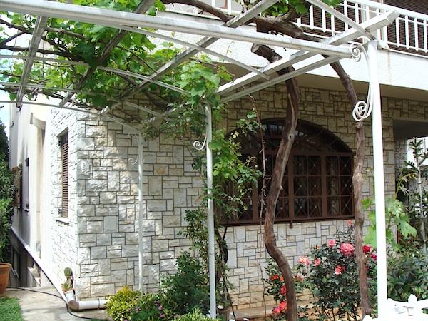grape arbor driveway