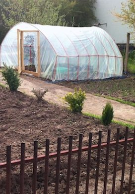 kamencia greenhouse