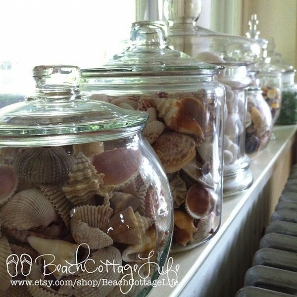 shells in jars